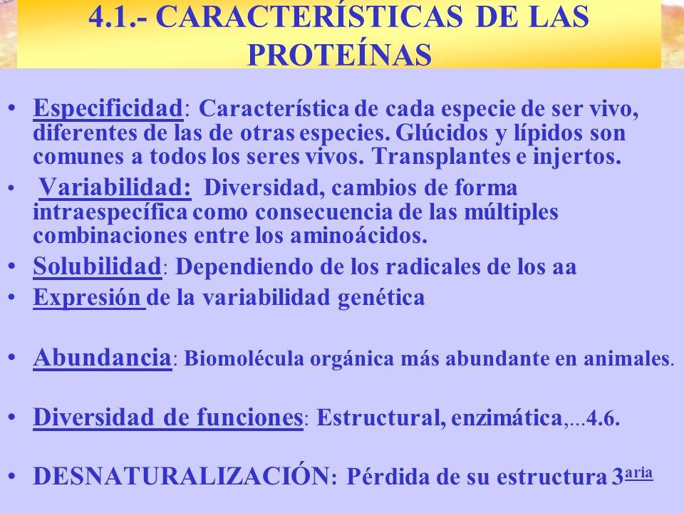 4.1.- CARACTERÍSTICAS DE LAS PROTEÍNAS