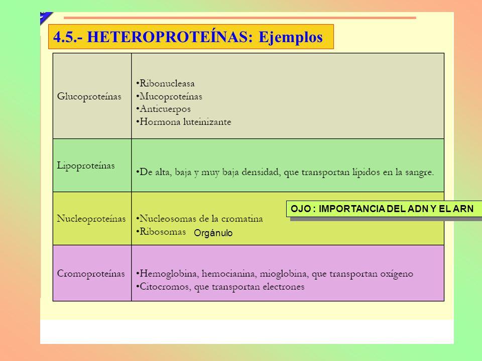 4.5.- HETEROPROTEÍNAS: Ejemplos