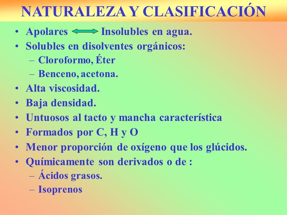 NATURALEZA Y CLASIFICACIÓN