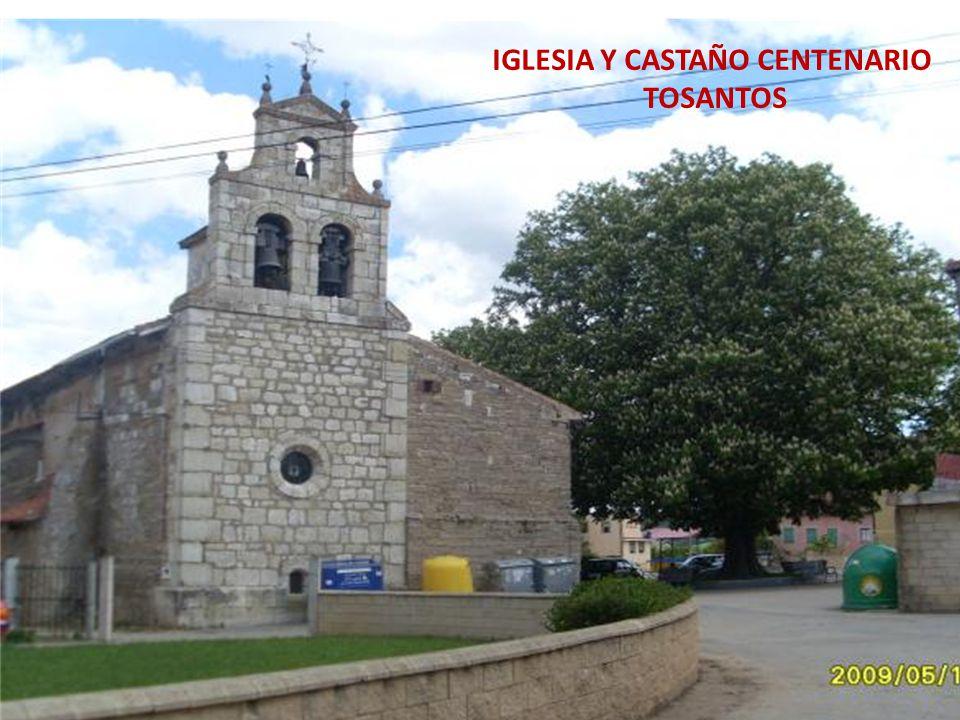 IGLESIA Y CASTAÑO CENTENARIO