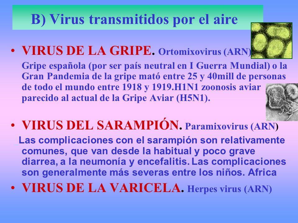 B) Virus transmitidos por el aire