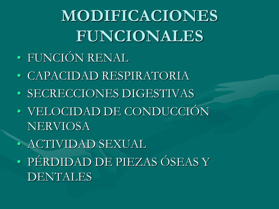 MODIFICACIONES FUNCIONALES