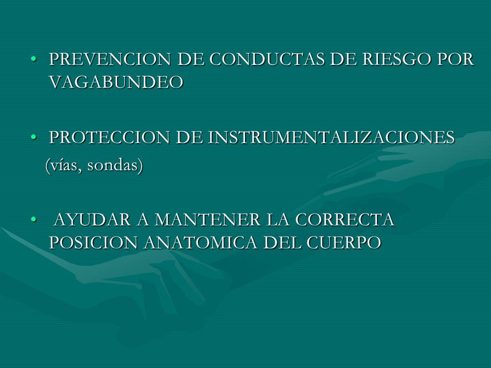 PREVENCION DE CONDUCTAS DE RIESGO POR VAGABUNDEO
