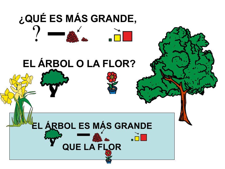 ¿QUÉ ES MÁS GRANDE, EL ÁRBOL O LA FLOR