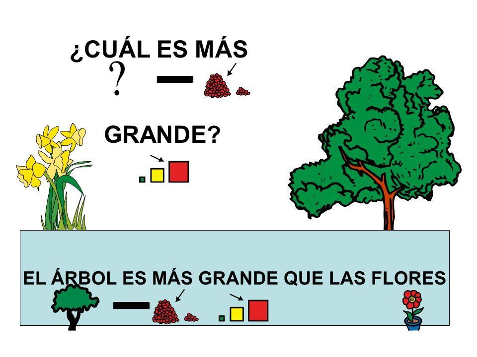 EL ÁRBOL ES MÁS GRANDE QUE LAS FLORES