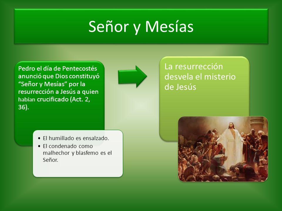 Señor y Mesías La resurrección desvela el misterio de Jesús