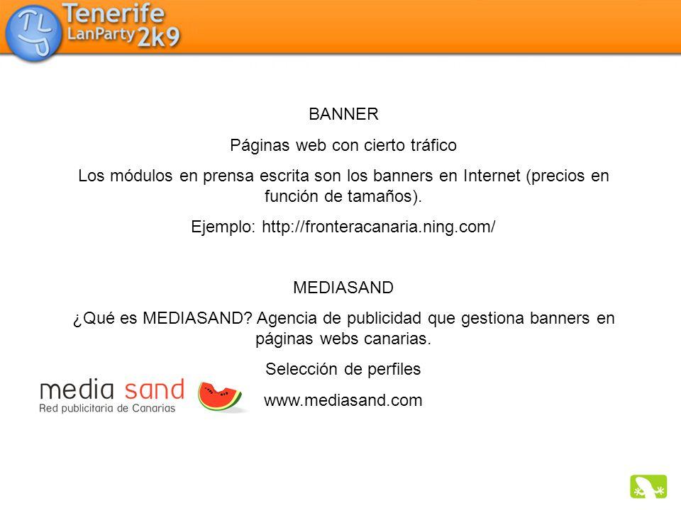 Páginas web con cierto tráfico