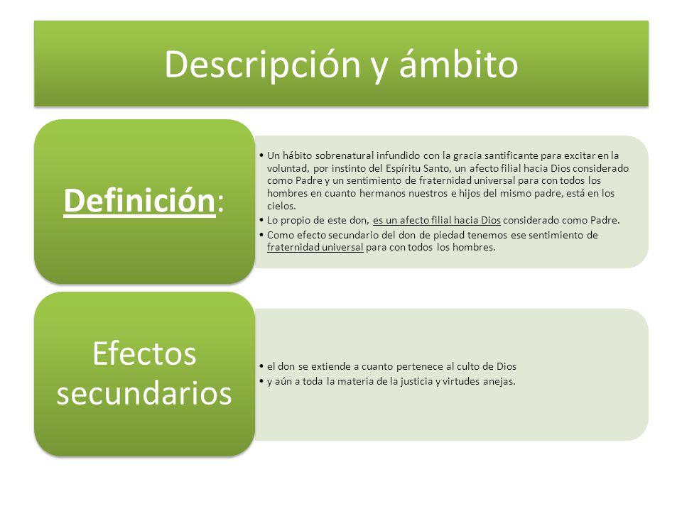 Descripción y ámbito Definición: