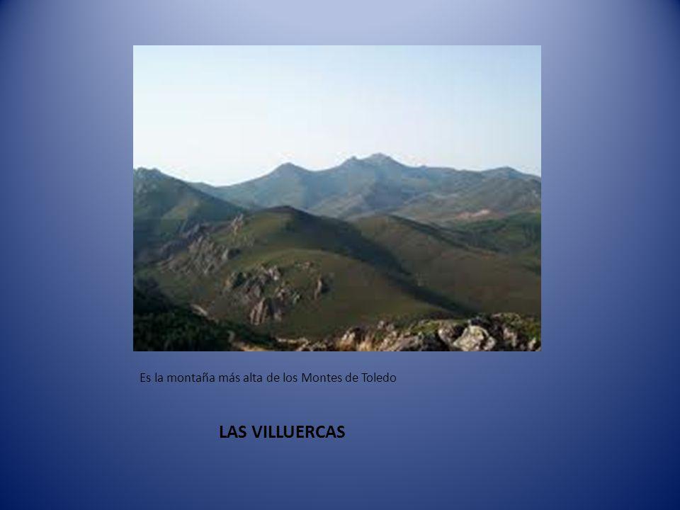 LAS VILLUERCAS Es la montaña más alta de los Montes de Toledo