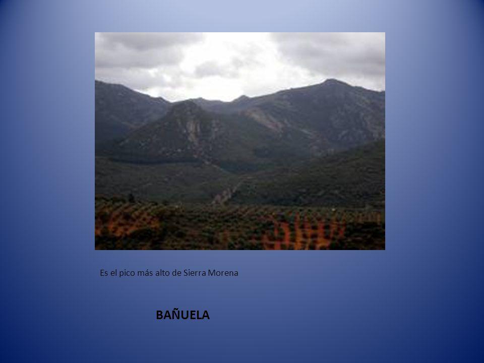 BAÑUELA Es el pico más alto de Sierra Morena