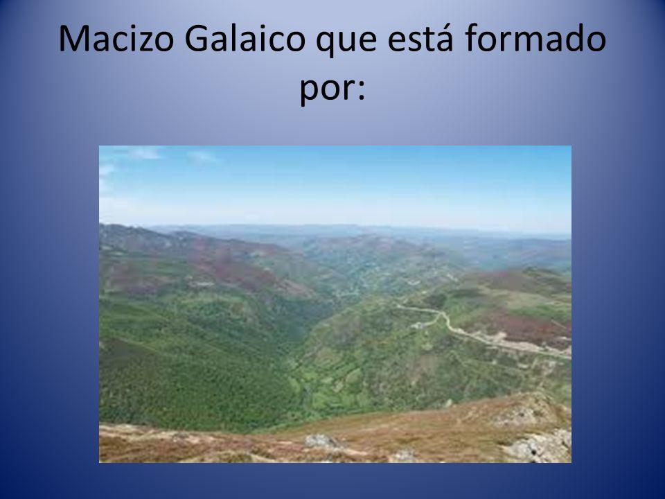 Macizo Galaico que está formado por: