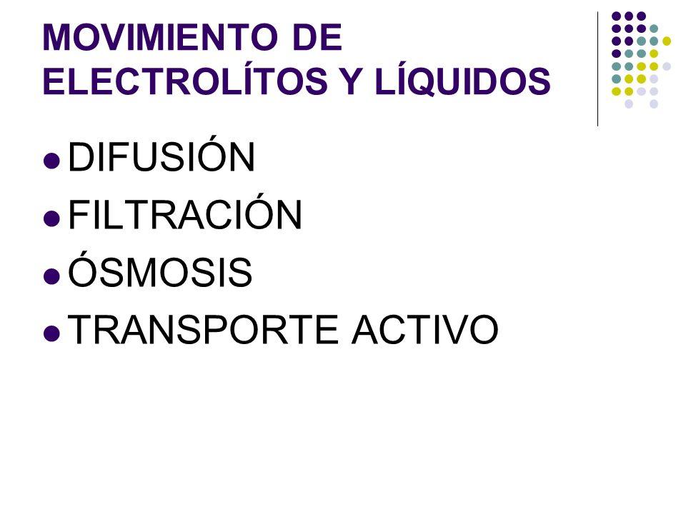 MOVIMIENTO DE ELECTROLÍTOS Y LÍQUIDOS
