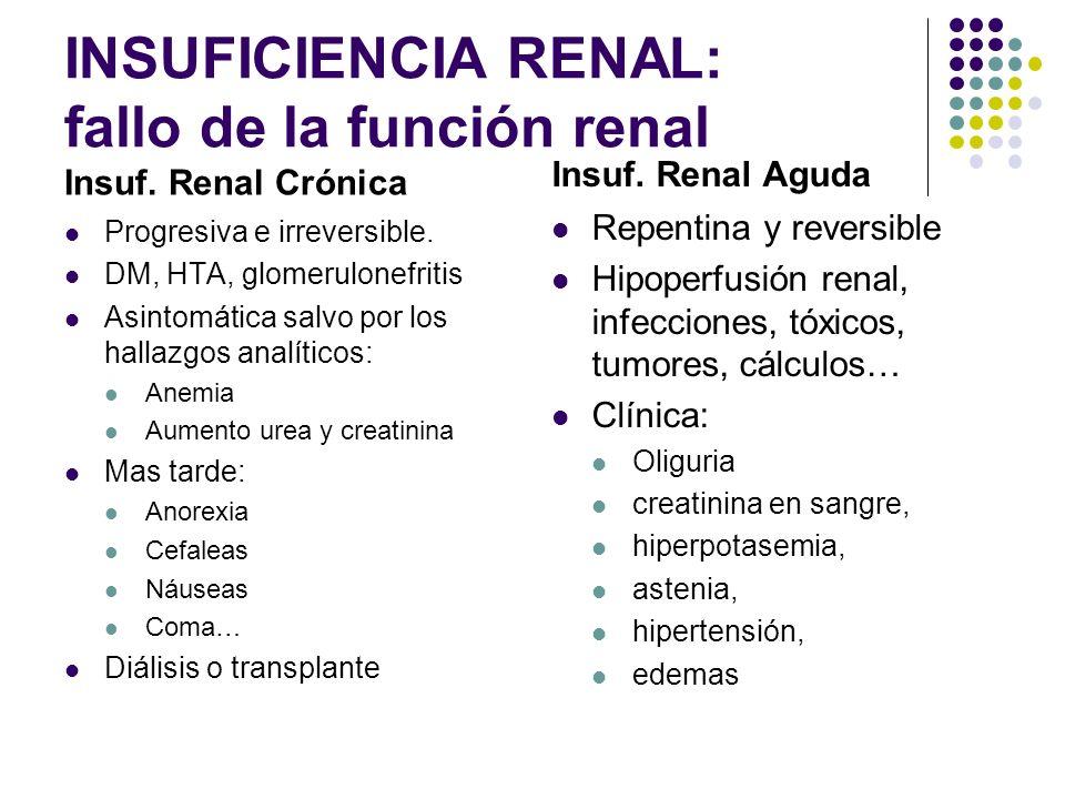 INSUFICIENCIA RENAL: fallo de la función renal