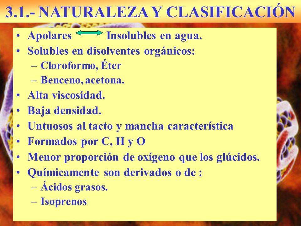 3.1.- NATURALEZA Y CLASIFICACIÓN