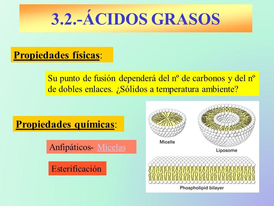 3.2.-ÁCIDOS GRASOS Propiedades físicas: Propiedades químicas: