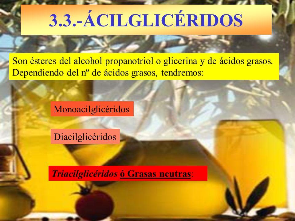 3.3.-ÁCILGLICÉRIDOS Son ésteres del alcohol propanotriol o glicerina y de ácidos grasos. Dependiendo del nº de ácidos grasos, tendremos: