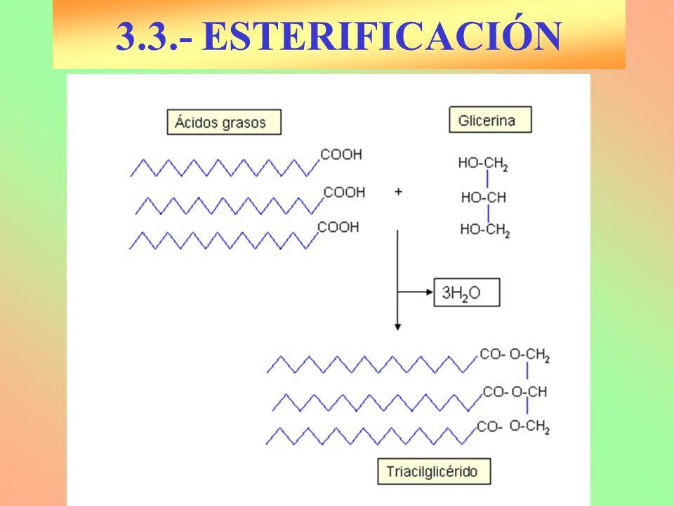 3.3.- ESTERIFICACIÓN