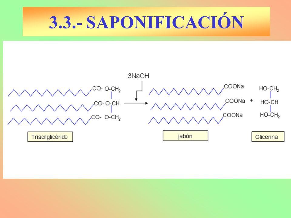 3.3.- SAPONIFICACIÓN