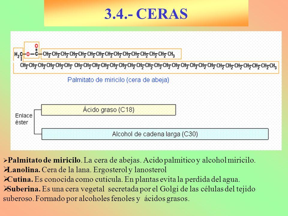 3.4.- CERAS Lanolina. Cera de la lana. Ergosterol y lanosterol
