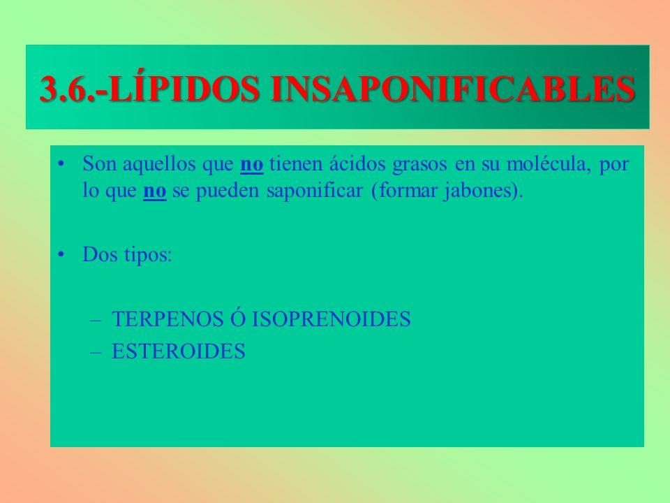 3.6.-LÍPIDOS INSAPONIFICABLES