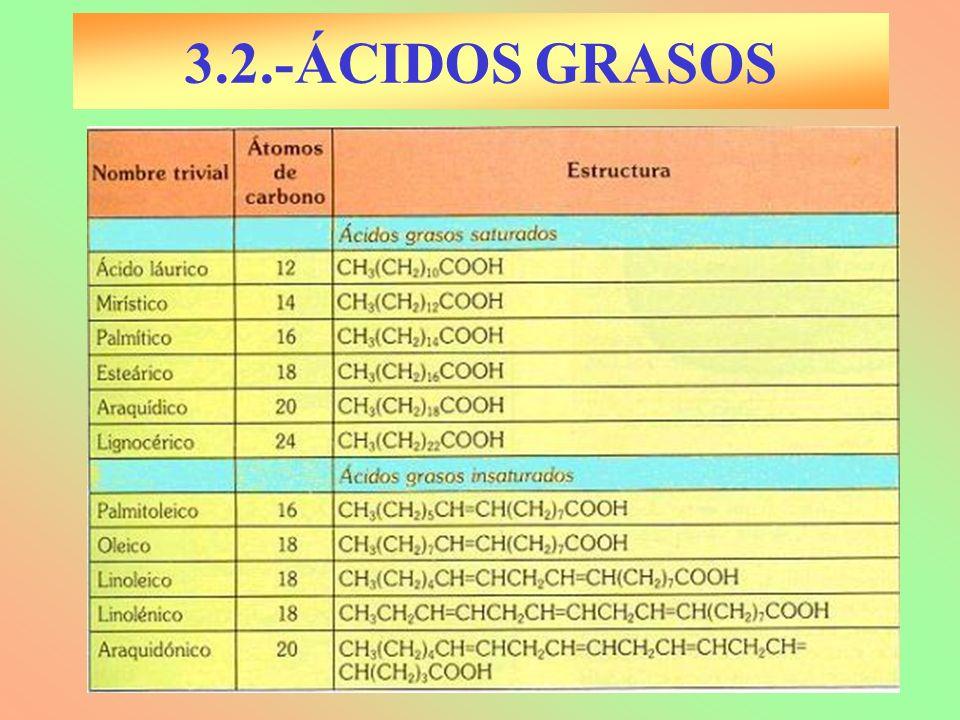 3.2.-ÁCIDOS GRASOS