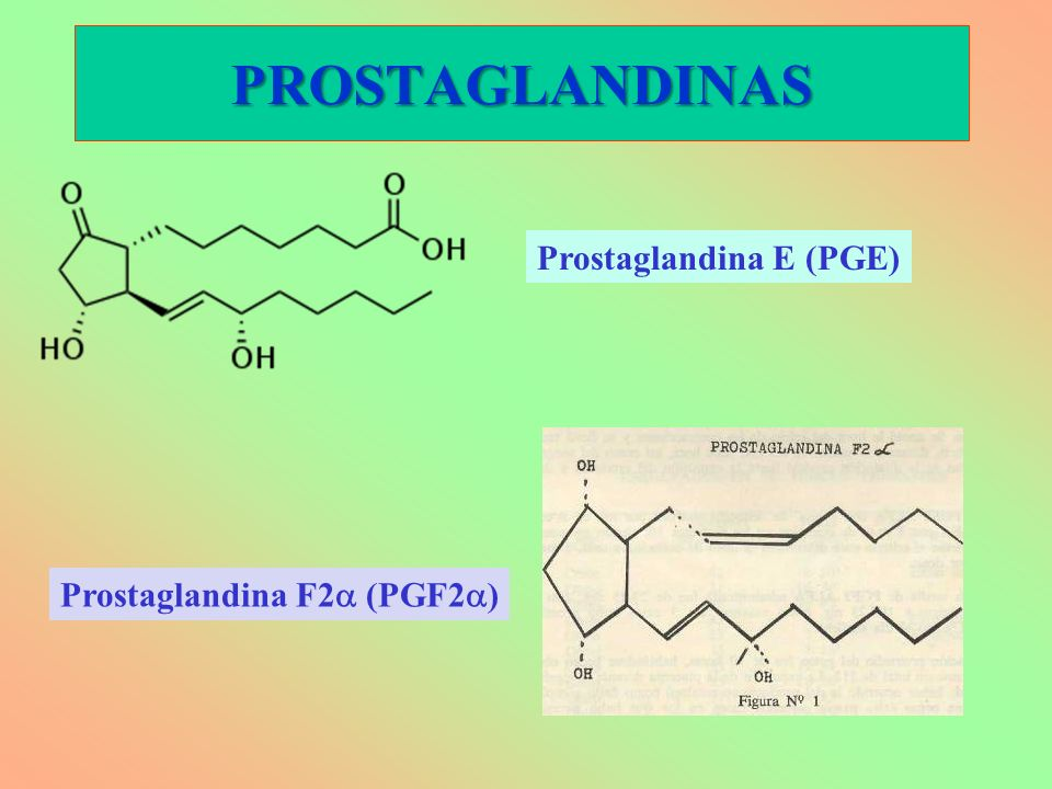 PROSTAGLANDINAS Prostaglandina E (PGE) Prostaglandina F2a (PGF2a)