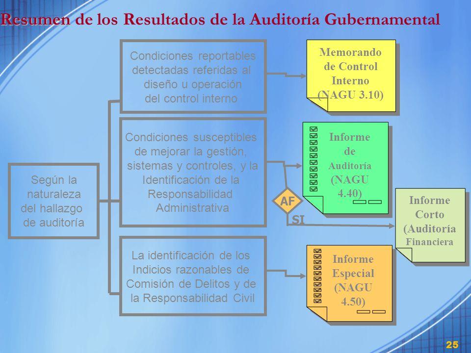 Resumen de los Resultados de la Auditoría Gubernamental