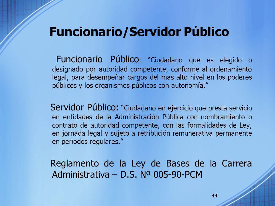 Funcionario/Servidor Público
