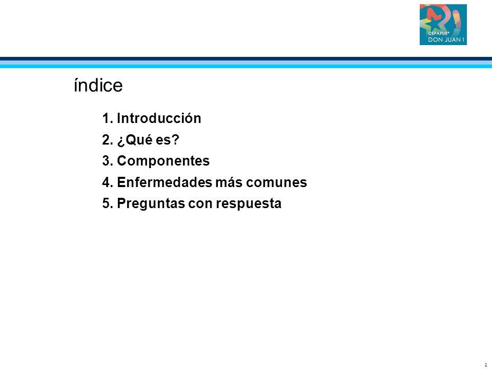 índice 1. Introducción 2. ¿Qué es 3. Componentes