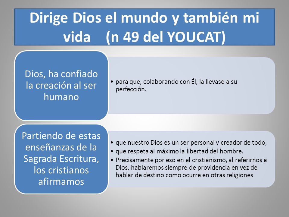 Dirige Dios el mundo y también mi vida (n 49 del YOUCAT)