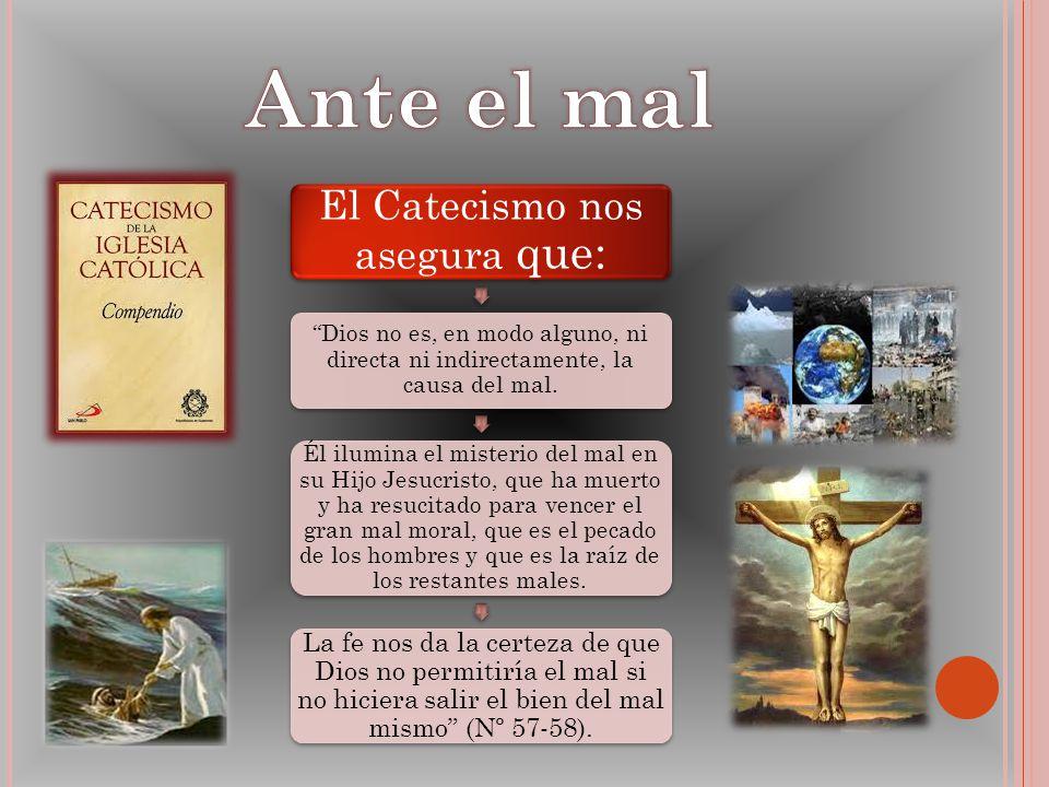 El Catecismo nos asegura que: