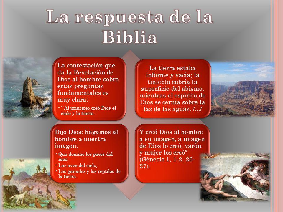 La respuesta de la Biblia