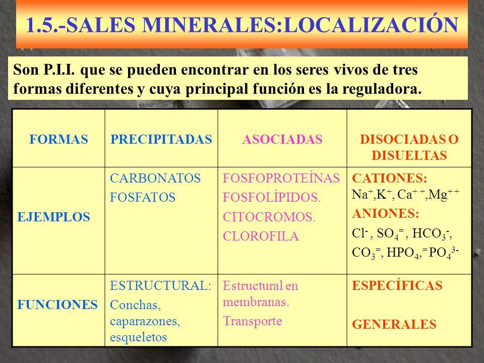 1.5.-SALES MINERALES:LOCALIZACIÓN