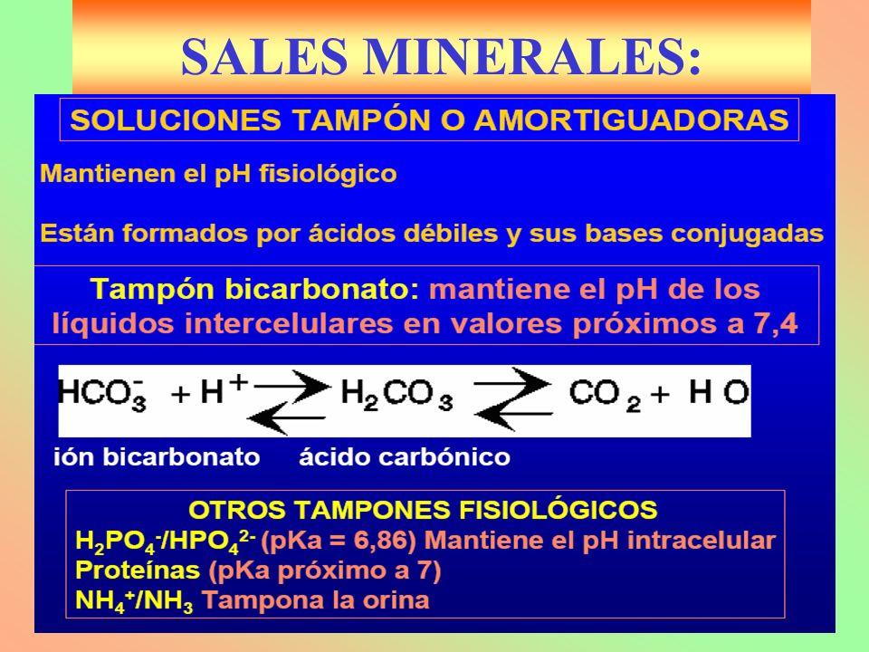 Biología 2º SALES MINERALES: J.M.Freire
