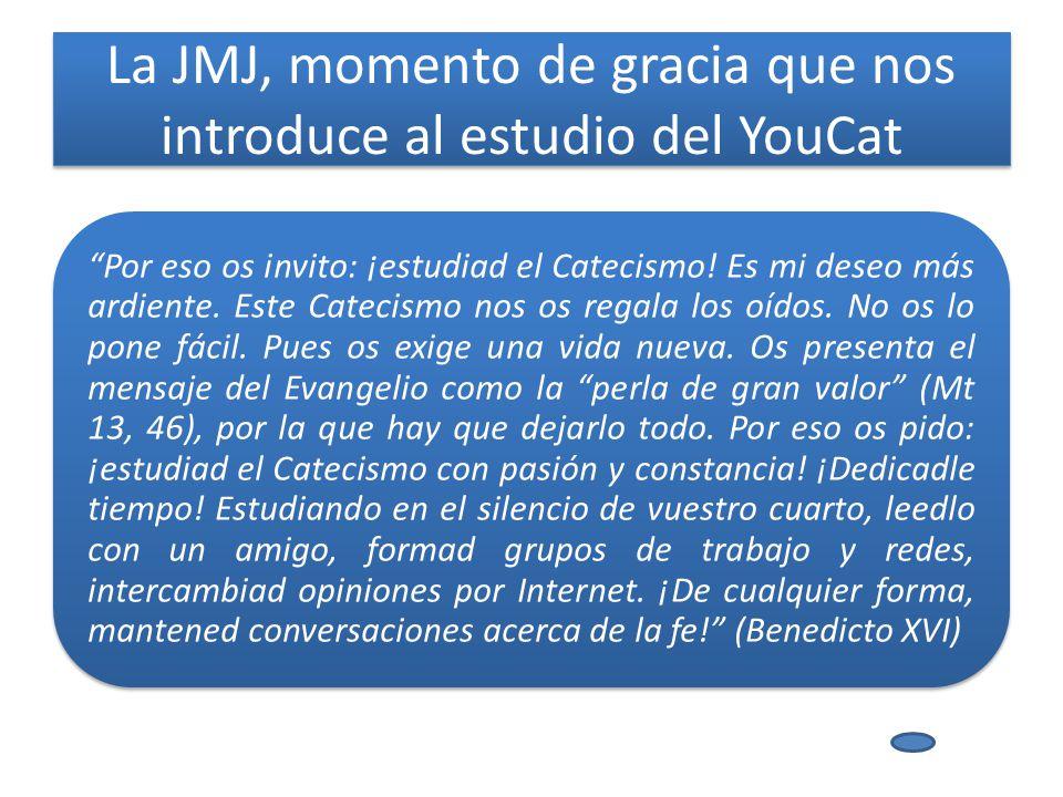 La JMJ, momento de gracia que nos introduce al estudio del YouCat