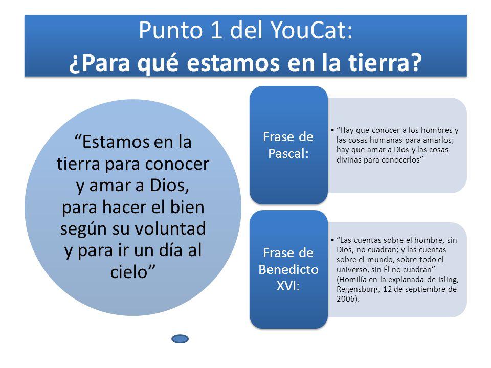 Punto 1 del YouCat: ¿Para qué estamos en la tierra