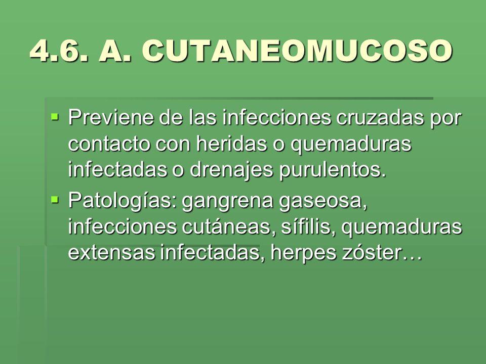 4.6. A. CUTANEOMUCOSOPreviene de las infecciones cruzadas por contacto con heridas o quemaduras infectadas o drenajes purulentos.