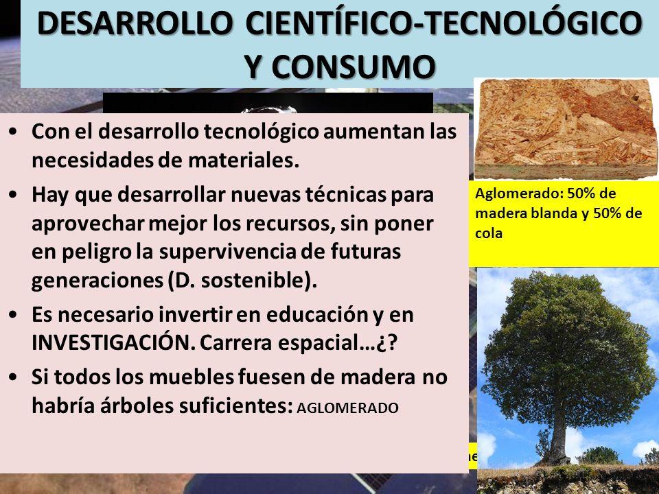 DESARROLLO CIENTÍFICO-TECNOLÓGICO Y CONSUMO 196