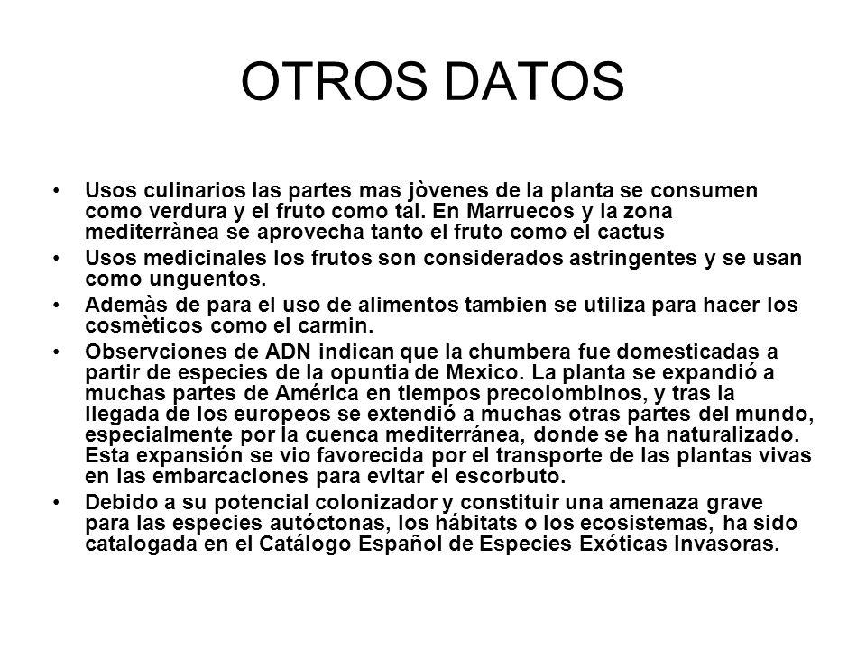 OTROS DATOS
