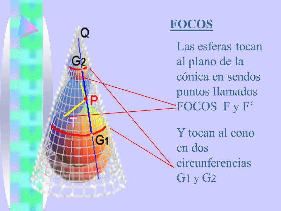 FOCOS Las esferas tocan al plano de la cónica en sendos puntos llamados FOCOS F y F' Y tocan al cono en dos circunferencias G1 y G2.