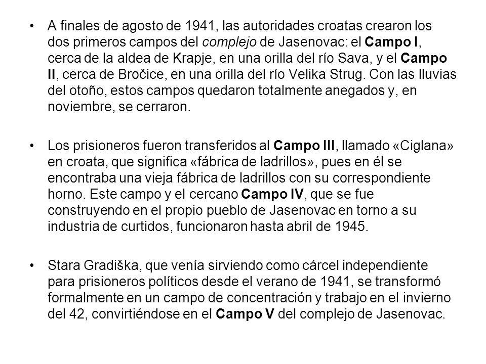 A finales de agosto de 1941, las autoridades croatas crearon los dos primeros campos del complejo de Jasenovac: el Campo I, cerca de la aldea de Krapje, en una orilla del río Sava, y el Campo II, cerca de Bročice, en una orilla del río Velika Strug. Con las lluvias del otoño, estos campos quedaron totalmente anegados y, en noviembre, se cerraron.