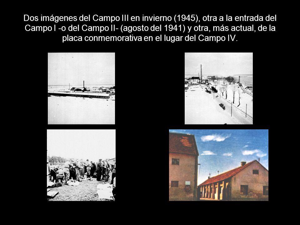Dos imágenes del Campo III en invierno (1945), otra a la entrada del Campo I -o del Campo II- (agosto del 1941) y otra, más actual, de la placa conmemorativa en el lugar del Campo IV.