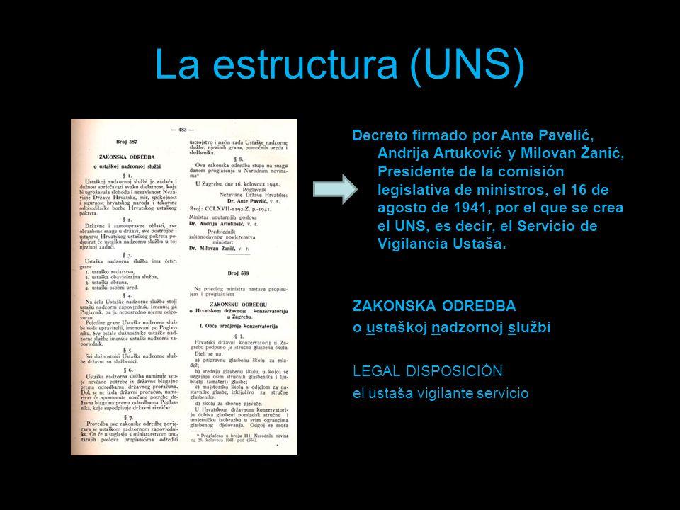 La estructura (UNS)