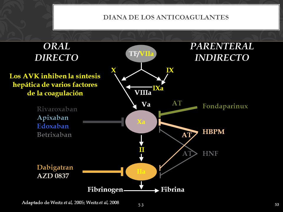 Diana de los anticoagulantes