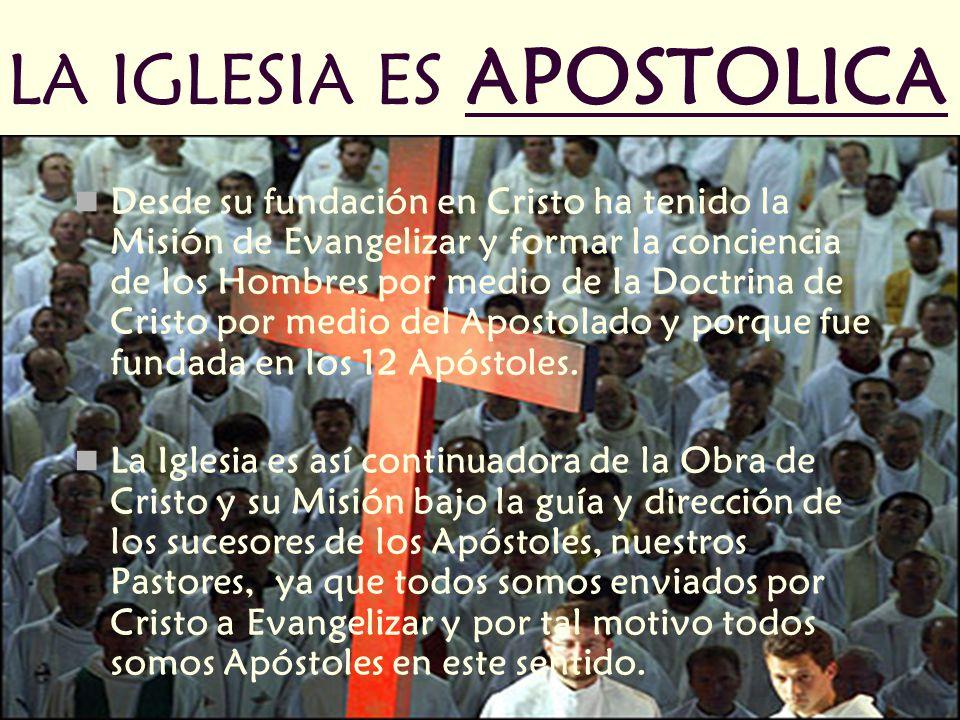 LA IGLESIA ES APOSTOLICA