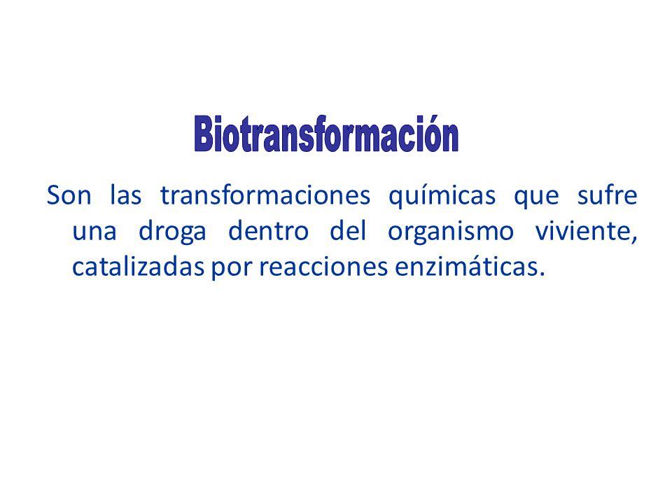 Biotransformación Son las transformaciones químicas que sufre una droga dentro del organismo viviente, catalizadas por reacciones enzimáticas.