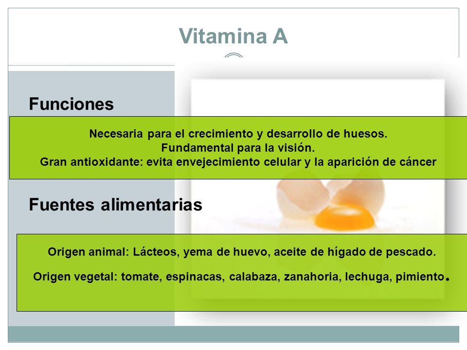 Vitamina A Funciones Fuentes alimentarias