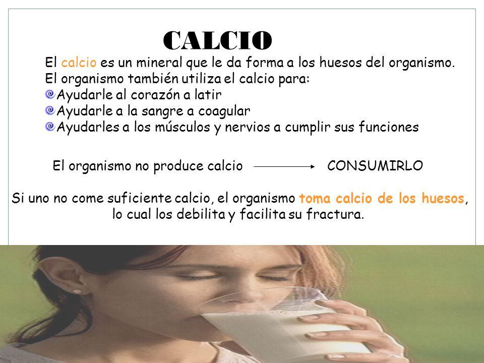 CALCIO El calcio es un mineral que le da forma a los huesos del organismo. El organismo también utiliza el calcio para: