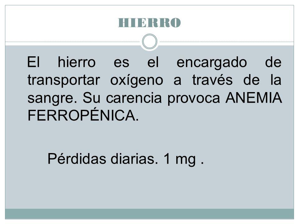 Pérdidas diarias. 1 mg . HIERRO