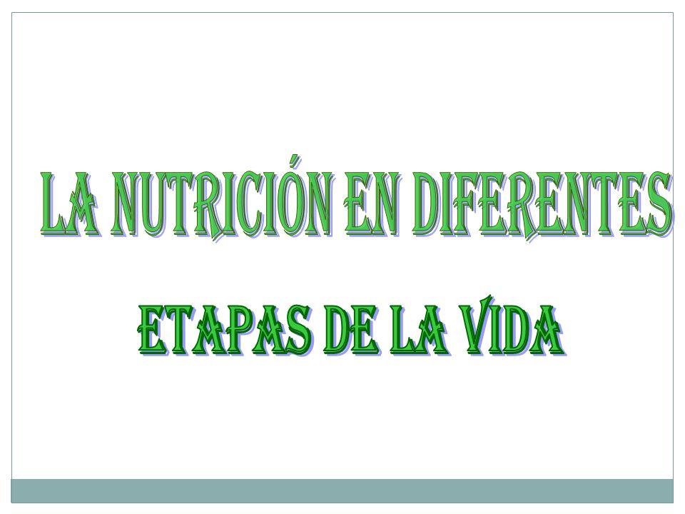 LA NUTRICIÓN EN DIFERENTES